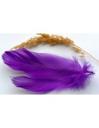 Перо гуся фиолетовое