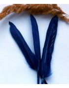 Перо гуся сине-фиолетовое