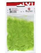 Перья декоративные светло-зеленые 8 см 10 шт