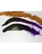 Перо петуха темно-фиолетовое