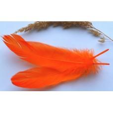 Перо гуся оранжевое