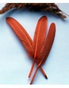 Перо гуся темно-песочного цвета