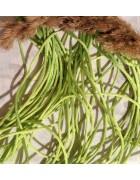 Шнур нейлоновый зеленый 2 мм